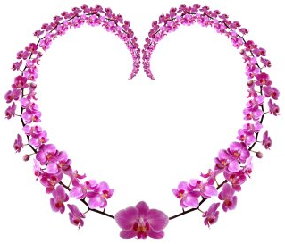 Inspired by Eat Pray Love - Orchid Heart Circle
